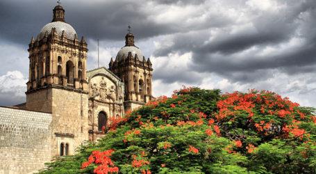Oaxaca recibirá a los artistas de plástica más importantes del Yucatán