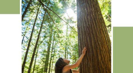 Barceló Bávaro Grand Resort celebra el Día Mundial del Medio Ambiente con un plan de reducción de plásticos